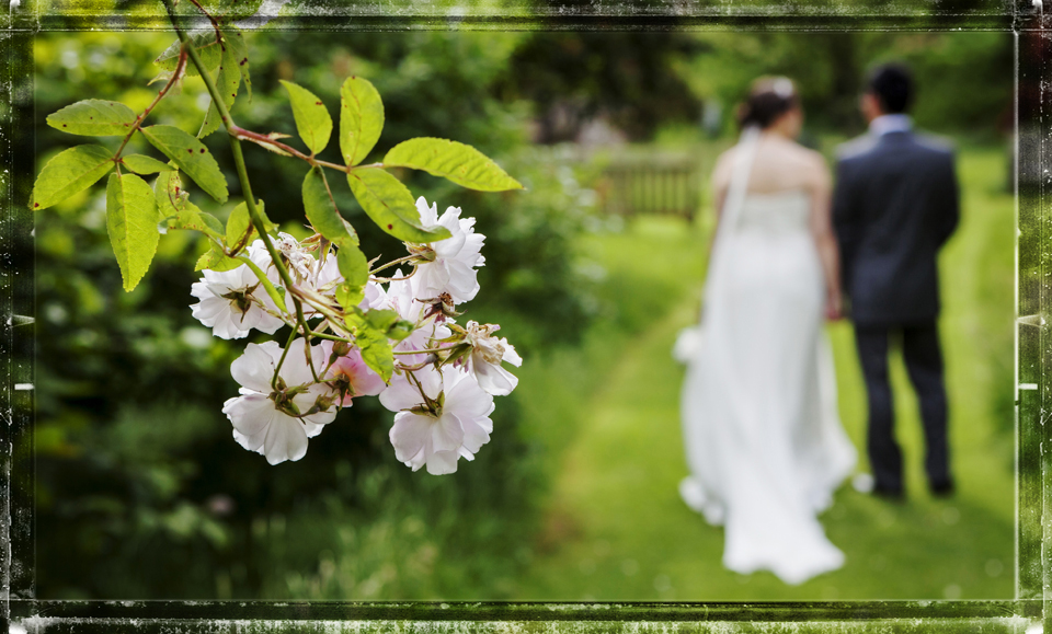 Bride and Groom wander in the grounds of Walcot Hall
